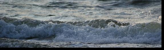 Tanie wczasy w chorwacji z wyżywieniem morze egejskie delfiny